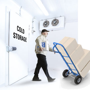 Cold Chain Storage