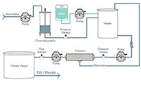 purification workflow diagram image