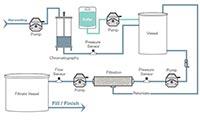 purification workflow diagram image
