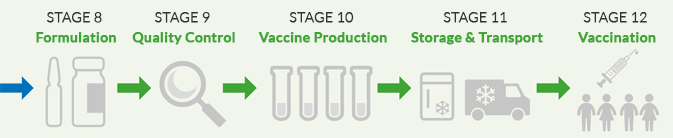 vaccine production & manufacturing workflow