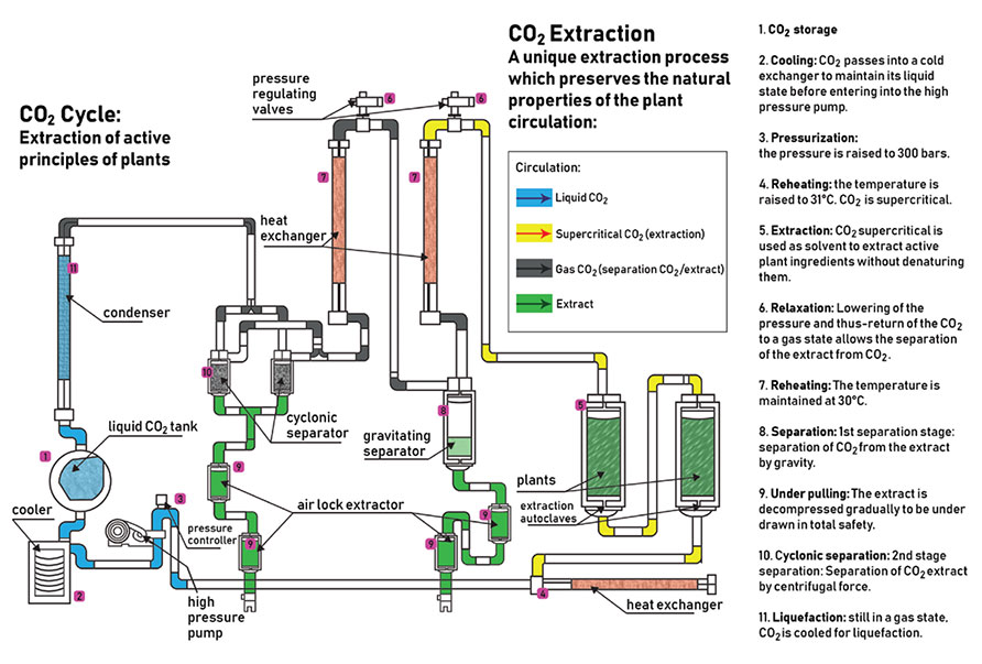 Super Critical Carbon Dioxide Cannabis Extraction Method Chart