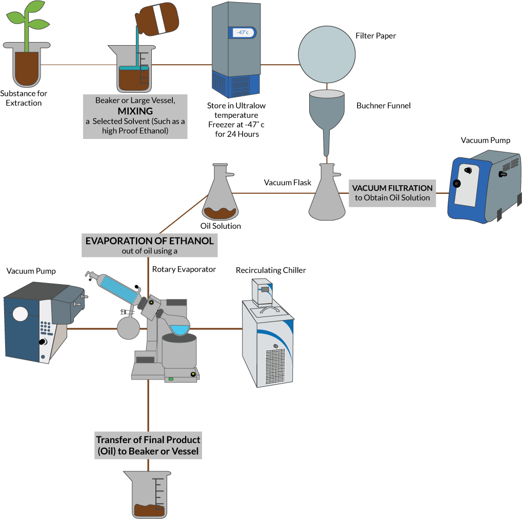 Plant Solvent Extraction Method Using Ethanol 3 Steps Cole Parmer
